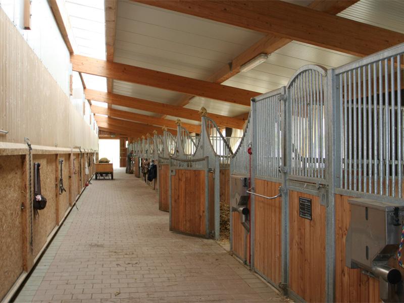 pferdehallen hallen f r pferdesport haltung von groha. Black Bedroom Furniture Sets. Home Design Ideas